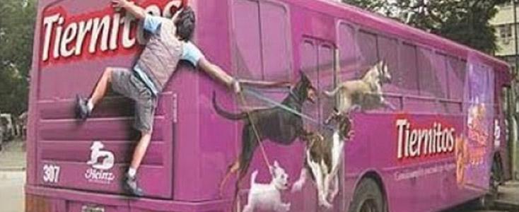 Tiernitos Dog Treats Bus Wrap